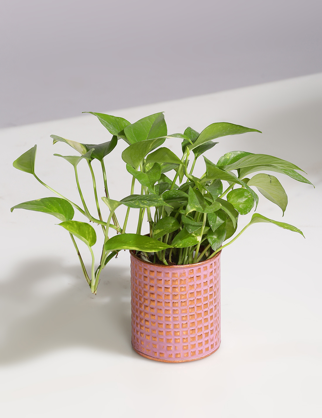 Embossed Vintage finish metal planter