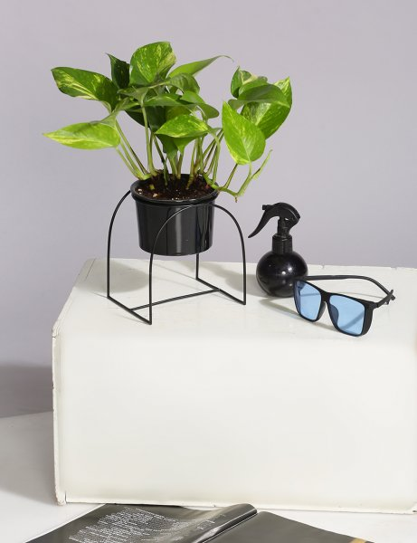 Ceramic Planter with U shaped metal Stand